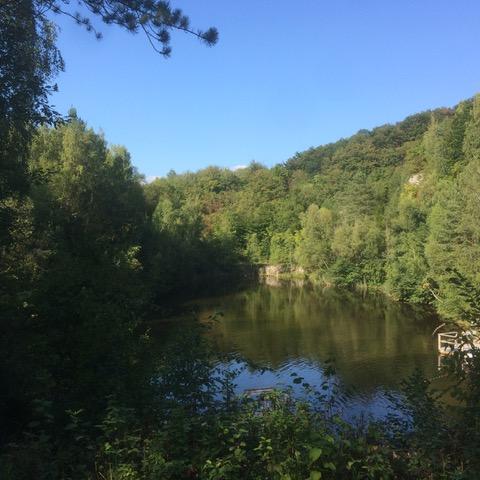 """Fahrradtour zum """"Grünen See"""""""